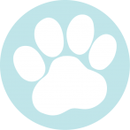 Cottesloe Dog Walkers, Dog Walking Service, Pet Sitting, Dog Walking Perth, Dog Walking Cottesloe, Dog Walking Mosman Park, Dog Walking Claremont, Dog Walking Swanbourne, Pet Sitting Perth, Pet Sitting Cottesloe, Pet Sitting Mosman Park, Pet Sitting Claremont, Pet Sitting Swanbourne